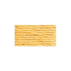 117-3855 LIght Autumn Gold - Six Strand DMC Cotton Floss