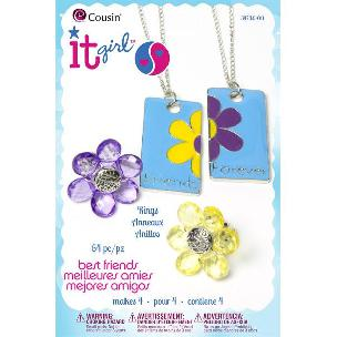 Best Friends Kit 2: Jewelry Beading kit by Cousin